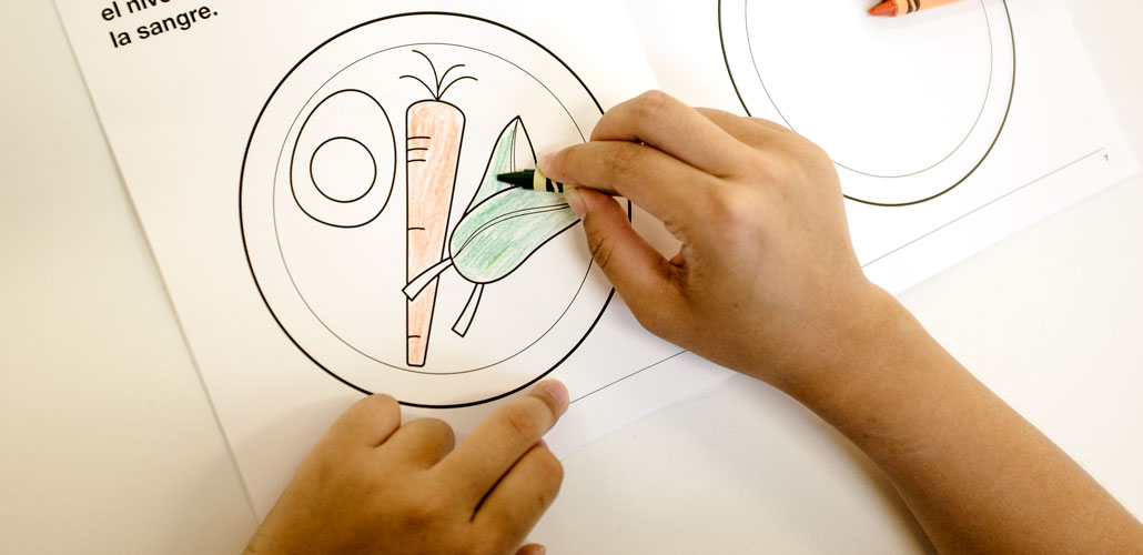 Person coloring in a plate of vegetables in a type 1 diabetes coloring book